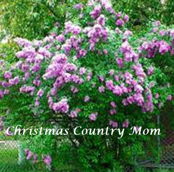 Christmas Country Mom