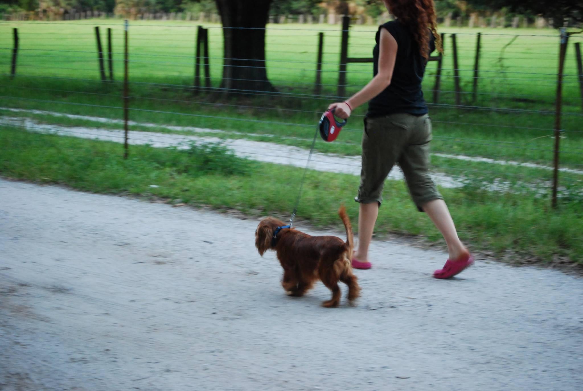 Anne-Cloud 9 lead-walkiing