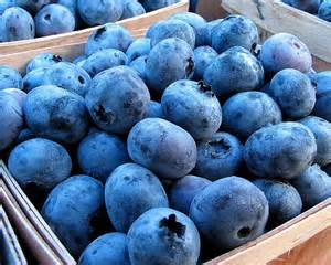 Fresh, Organic Blueberries