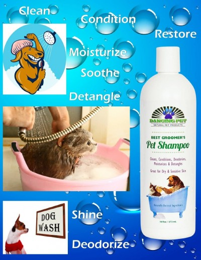 dancing pet shampoo