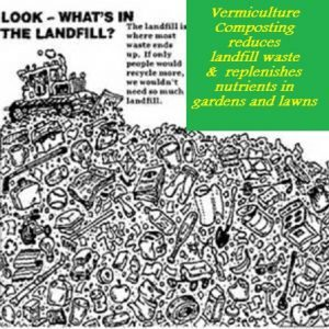vermiculture composting
